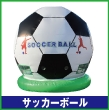 063_soccerball_sn