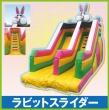113_rabbitslider_sn