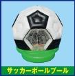 083_サッカーボールプール